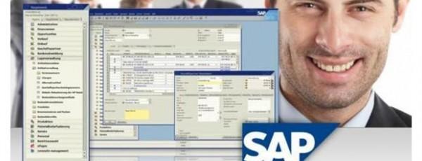 Software Captura Peso a Otros Sistemas (SAP)