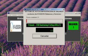 software pesaje camiones v11 (27)